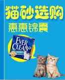 猫砂选购锦囊